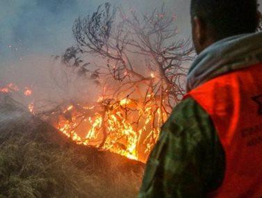Ενός λεπτού σιγή στην Βουλή για τα θύματα της φονικής πυρκαγιάς στο Μάτι