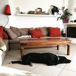 Η πασίγνωστη Ελληνίδα μας δείχνει το σαλόνι του σπιτιού της