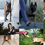 Eva Mendes: Τρυφερές στιγμές με το σκυλάκι της