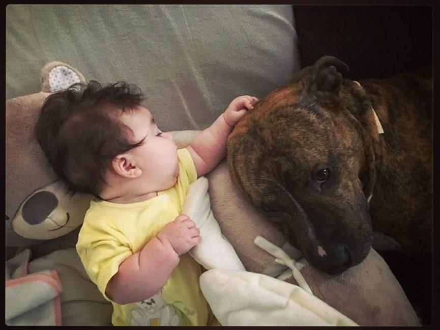 Ιβάν Σβιτάιλο: Η τρυφερή ανάρτηση με την τεσσάρων μηνών κόρη του!