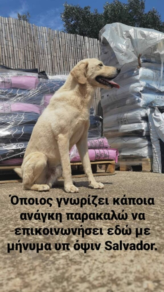 koutsopoulos